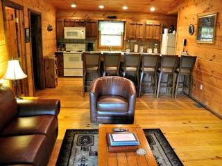 Mountain Lure - This Single Level Cabin is Quite Secluded and Has Wi-Fi, A Sheltered Hot Tub, Fire Pit, and Paved Access - Bryson City vacation rentals