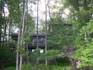 Treehouse overlooking peaceful Lake Natalie - Gouldsboro vacation rentals