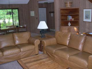 Beautiful pet friendly house on Lake Natalie - Gouldsboro vacation rentals