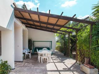 Experience in the countryside of Salento - Nardo vacation rentals