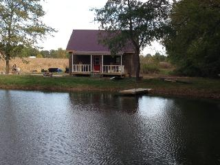 The Goose Pond Cottage -- a peaceful retreat! - Lyons vacation rentals