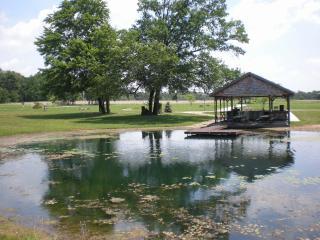 The Lake House at Pleasant Grove Farm - Lyons vacation rentals