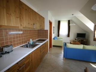 2BD Awesome combo: GOLF&SPA - Zalacsany vacation rentals
