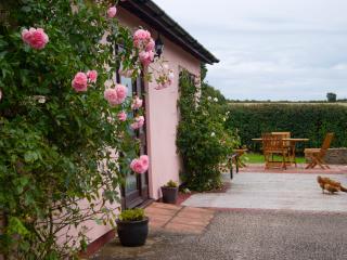 Faraway Barn - Clifton-upon-Teme vacation rentals