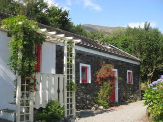 2 bedroom Cottage with Internet Access in Castletownbere - Castletownbere vacation rentals