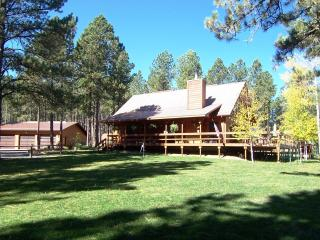 "3 Bedroom Cabin in the ""Heart of the Black Hills"" - Deadwood vacation rentals"