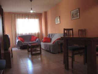 big apartment with 4 rooms+parking - Beniajan vacation rentals