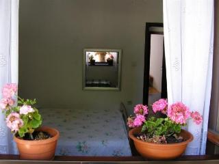 Apartments Bakic - Kozino vacation rentals