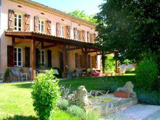 Delightful French Country Manor - Salvagnac vacation rentals