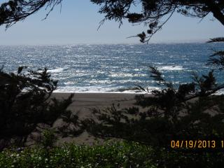 Sonoma Coast Ocean Front Property - Jenner vacation rentals