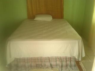Spanish Town Guesthouse - Spanish Town vacation rentals