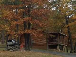 Wild Plum ~ Small Log Cabin #1 - Eureka Springs vacation rentals