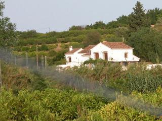 Vega Fahala Rural Villa w priv pool in orchard - Alhaurin el Grande vacation rentals