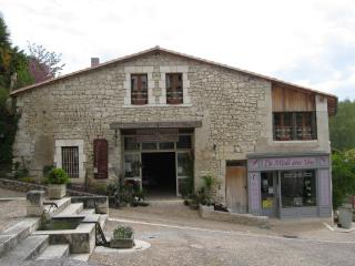 Romantic 1 bedroom Condo in Aubeterre-sur-Dronne - Aubeterre-sur-Dronne vacation rentals