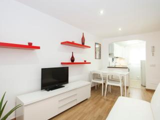 CHIC & BASIC FULL APARTMENT, CENTER - Palma de Mallorca vacation rentals