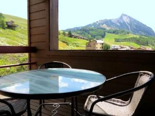 Redstone #37 - Crested Butte vacation rentals