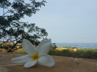 Casa Monacita, Ocean Views, walk to beach - Tamarindo vacation rentals