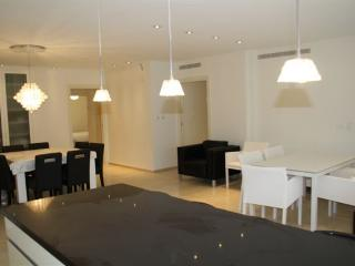 Apartment in King David Residence - Jerusalem vacation rentals