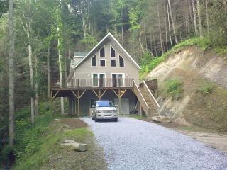 North Carolina Blue Ridge Mt's.3/3 Home Sleeps 10 - Tuckasegee vacation rentals