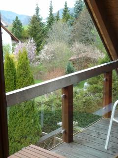 4-Star Holiday House Hinterzarten studio 4 - Hinterzarten vacation rentals