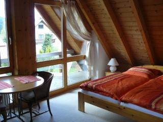 4-star-holiday house Rösslewiese studio 4 - Hinterzarten vacation rentals