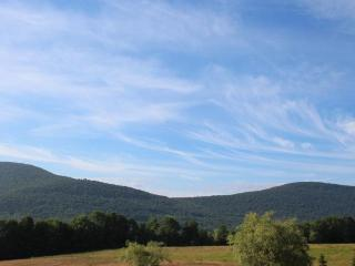 Million Dollar views in the Catskills Mountains - Denver vacation rentals