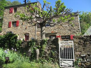 Nice House with Internet Access and Balcony - Genolhac vacation rentals