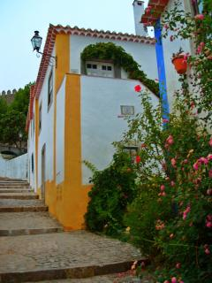 Casa de Cima - Next to the Obidos Pousada / Hotel - Obidos vacation rentals