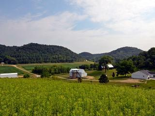 Awsome 86 acre farm in the hills of Vernon County - La Crosse vacation rentals