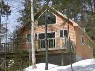 Four season vacation on wilson pond, just 5min fr - Greenville vacation rentals
