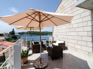 Villa Bon Vivant Dubrovnik - Dubrovnik vacation rentals