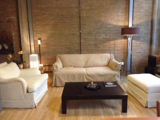 Nice 1 bedroom Condo in Buenos Aires - Buenos Aires vacation rentals