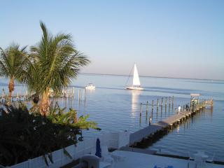 Beautiful Condo with Internet Access and Dishwasher - Masaryktown vacation rentals