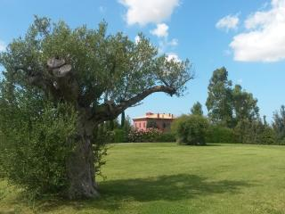 PELAGONE - Magliano in Toscana vacation rentals