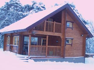 Beautiful Cabin with Kettle and Hot Tub - Keith vacation rentals