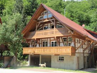 Vacation Apartment in Gengenbach - cozy, extensive, idyllic (# 5345) - Gengenbach vacation rentals