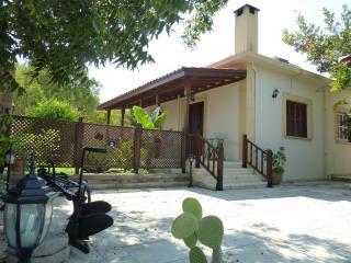 Farm House - Ozankoy vacation rentals