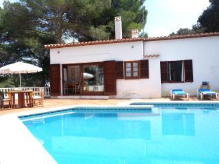 Beautiful villa, pool & garden - Puig de Ros vacation rentals