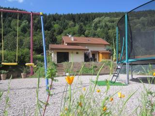 Cozy 2 bedroom Gite in Gerardmer - Gerardmer vacation rentals