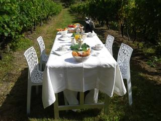 Nice Guest house with Internet Access and A/C - Saint-Dizant-du-Gua vacation rentals