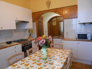 Casa Gialla - Vernasca vacation rentals
