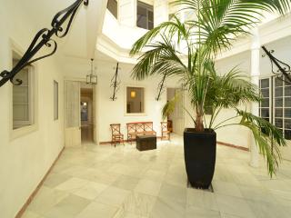 andalusian town house apartment - Costa de la Luz vacation rentals