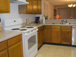 Spacious Condo on the Beach with Beautiful View of  the Ocean - Florida North Atlantic Coast vacation rentals