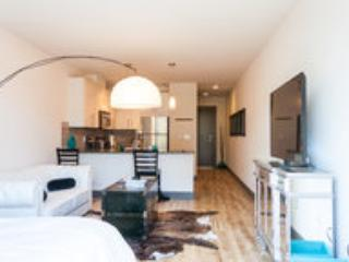 Views | Brand New | Prime Location | Lux Interior - Seattle vacation rentals