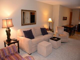 Ideal Mayo Clinic location! Clean! Cozy! See Reviews! 5 Stars! Free WiFi... - Rochester vacation rentals