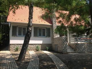 Tihany-Sajkod Holiday Home - Balatonfured vacation rentals