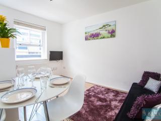 2Bedroom Londoner City Marque Flat - London vacation rentals