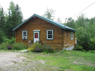 The Brookside Cabin - Brownfield vacation rentals