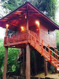Perfect 1 bedroom House in Hambantota with Internet Access - Hambantota vacation rentals