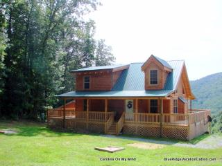 NEWER LOG CABIN*VIEW*HOTTUB*FIREPLACE*FOOSBALL - Blue Ridge Mountains vacation rentals